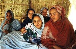 Plaidoyer pour une participation des femmes mauritaniennes dans la vie sociopolitique